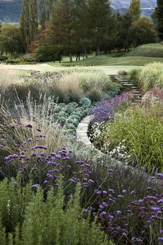 The curve just adds to the beautiful tapestry of perennials int his landscape.