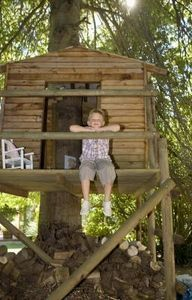 1000 images about tree fort on pinterest tree forts for How to build a simple tree fort
