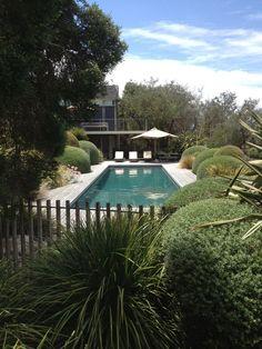 Landscaping Around Pool, Fence Landscaping, Pool Fence, Garden Swimming Pool, Swiming Pool, Swimming Pool Designs, San Juan Pools, Modern Pools, Luxury Pools