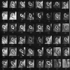 for wunderkammer: tableau synoptique d'oreilles d'a. bertillon mysterious lurker, ramona has submitted this beatiful taxonomy of the ears of french criminals to the wunderkammer. Photography Themes, Photography Projects, Creative Photography, Photos Corps, Composition Photo, Sequence Photography, Contact Sheet, Experimental Photography, Art Plastique