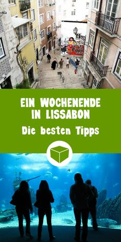 So you spend a super nice weekend in Lisbon. The best tips for your short trip to Portugal. Here at Mach something nice: trip Best Places To Camp, Camping Places, Oh The Places You'll Go, Places To Visit, Holiday World, Reisen In Europa, Weekend Fun, Short Trip, Week End