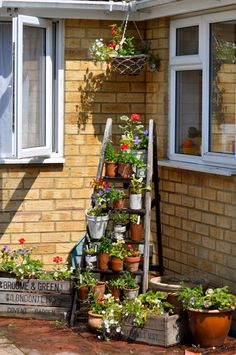 Old wooden stepladder with rusty tins and clay pots for flowers