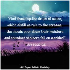 Job 3627 28 Bible Quotes Bible Quotes Book Of Job Bible