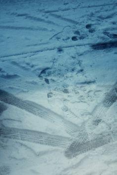 winter snow made by Lindsey van de Wetering