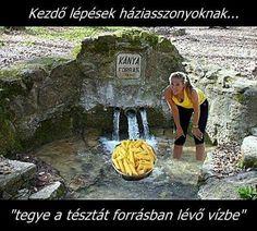Me Too Meme, Haha, Have Fun, Jokes, Travel, Smile, Random, Voyage, Chistes