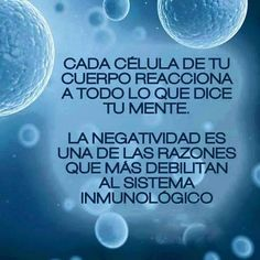 Every cell in your body reacts to what your mind says. Negativity is one of the reasons for a weak immune system. Positive Mind, Positive Thoughts, Positive Vibes, Coaching, General Quotes, The Ugly Truth, Spanish Quotes, Good To Know, Decir No
