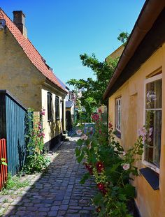 Dragör, Danmark - Home of my great-great grandmother. :)