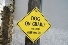 10 Mysterious and Insane Signs From The globe Funny Warning Signs, Funny Road Signs, Funny Quotes, Funny Memes, Jokes, 9gag Funny, Dog Quotes, Commercial Washing Machine, Tough Mudder