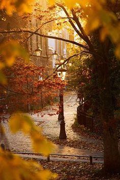 Those Autumn vibes☆