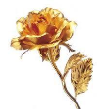 """Psicografias para a minha alma.: Irmã das Rosas: """"Nossos queridos Guias!"""" - 29.12.2..."""