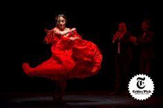 Flamenco Skirt, Skirts, Skirt, Gowns, Skirt Outfits, Petticoats, Dress