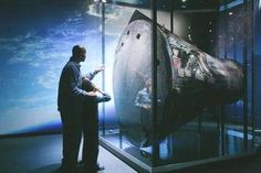 Adler Planetarium - included attraction on the Go Chicago Card! Chicago Attractions, Chicago Tours, Museum Tickets, Shedd Aquarium, Chicago History Museum, Admission Ticket, City Pass, Free Museums, Chicago Illinois