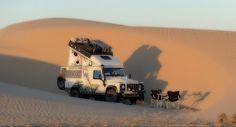 // Desert