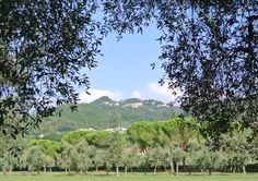 Garlenda golf course