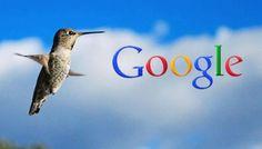 ¿Qué significa Google Hummingbird para el Marketing de Contenido?