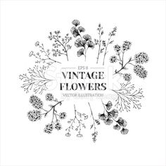 Hand drawn herb composition. Floral template. Vector illustration royalty-free stock vector art