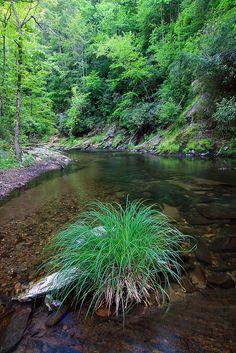 Conasauga river, Cohutta, Chattahoochee Ocoee, Murray County
