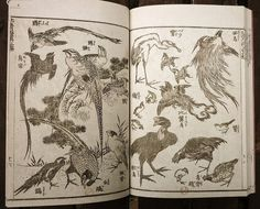 from the Hokusai mangas