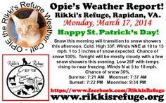 OPIE'S WEATHER REPORT Rikki's Refuge, Rapidan, VA. MONDAY, MARCH 17, 2014 Happy St. Patrick's Day!  Snow this morning will transition to snow showers this afternoon. Cold. High 33F. Winds NNE at 10 to 15 mph. 1 to 3 inches of snow expected. Chance of snow 100%. Tonight will be mostly cloudy with a few snow showers this evening. Low 26F with temps rising to near freezing. Winds N at 5 to 10 mph. Chance of snow 30%. Sunrise: 7:21 AM    Moonset: 7:37 AM  Sunset: 7:22 PM   Moonrise: 8:34 PM
