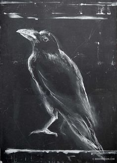 Season Of The Witch - A Southern Gothic Tale - Crow Chalk Drawing Crow Art, Raven Art, Bird Art, Chalkboard Drawings, Chalk Drawings, Crows Drawing, Drawing Art, Black Paper Drawing, Charcoal Art