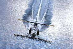 DHC-3T ....Great Shot by mistyfjordsair