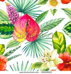 Vector illustration with watercolor flowers. Beautiful seamless background with tropical  plants on white. Composition with lily, anthurium, chinese hibiscus and monstera leaves.