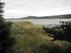 Lots and Land for Sale in Colliers, Newfoundland and Labrador $59,500 Newfoundland And Labrador, Land For Sale, Cabins, Country Roads, Mountains, Nature, Travel, Naturaleza, Viajes