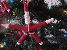 Coastal and Beach Ornaments Beach Christmas Ornaments, Coastal Christmas Decor, Fish Ornaments, Nautical Christmas, Santa Ornaments, Christmas Crafts, Christmas Decorations, Shell Ornaments, Christmas Ideas