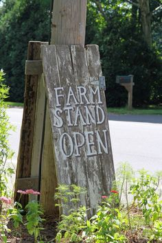 69 ideas fruit market sign farm stand for 2019 The Farm, Flowers For Sale, Cut Flowers, Growing Flowers, Summer Flowers, Planting Flowers, Patio, Backyard, Farmers Market Display