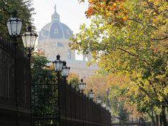 Der Herbst ist auch in Wien angekommen!