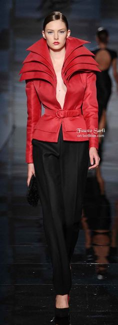 Fausto Sarli FW 2009 - definately add a blouse for work!