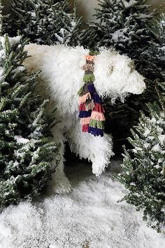 love the styling of this shot with the snow covered trees & shaggy polar bear wearing an adorable scarf ~ photo from Anthropologie