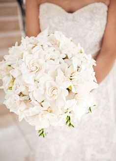 Fall in love with the sweet smell of gardenias! Along with their captivating aroma, gardenias also look lovely as a bridal bouquet.: