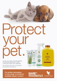 Protect your pet....