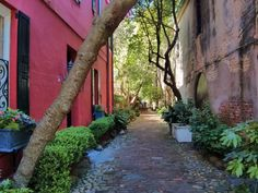 "Philadelphia Alley in Charleston, SC is alson know as ""Dueler's Alley"" -- reflecting its popularity as a site for settling matters of honor."