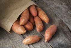 cultivarea cartofilor dulci