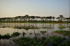 Beauty of Bangladesh by Ashraful Kabir Jewel on millionspix.com