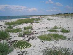Rørvig beach, Odsherred