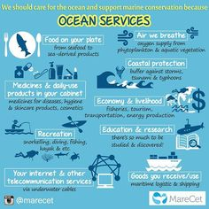 We are all connected to the ocean. Every breath we take, things we use daily, jobs for nearly half the people globally. There are only reasons for us to care and protect our ocean, no excuses! Together, let's keep our oceans clean and alive!  Happy World Oceans Day!  #marecet #yestomarineconservationbecause #oceanservices #ocean #food #seafood #air #oxygen #coastalprotection #medicine #dailyuseproducts #economy #livelihood #recreation #education #research #logistic #shipping #internet…