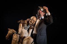 Don Kichot, fot. Marta Ankiersztejn