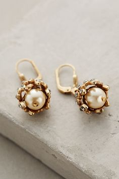 Gilded Acorn Earrings #anthropologie