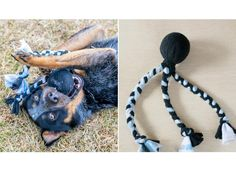 Learn how to make this easy fleece chew toy your fur-baby will flip for. >> http://www.diynetwork.com/made-and-remade/make-it/fleece-tug-and-fetch-dog-toy?soc=pinterest