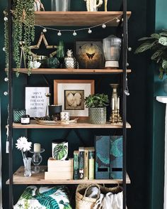 How To Use Dark Green in Your Living Room - Melanie Jade Designs I love how the industrial shelves and gold details look against this dark green wall. How to use dark green in your living room Dark Green Living Room, Accent Walls In Living Room, Green Rooms, Living Room Decor, Green Living Room Ideas, Living Rooms, Green Accent Walls, Dark Green Walls, Dark Walls