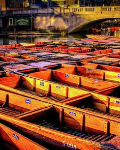 Punting on the river Cam, Cambridge, England UK. Beautiful original artwork by Australian photographer and artist Russell Alexander.