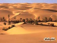 Risultati immagini per immagini di oasi desertiche