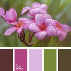 болотный, болотный зеленый, бордовый, грязный зеленый, грязный коричневый, зеленый, коричневый, малиновый, оттенки розового, подбор цвета для дизайна, тёмно-зелёный, цвет зелени.