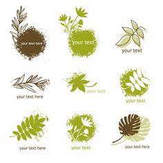 Fresh plant icons – vector graphics