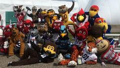 virginia mascots service - Google Search Office Football, Football Season, Seasons, Halloween, Virginia, Party, Logo, Google Search, Fiesta Party