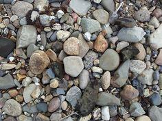 Sten på en strand på Fur. de er bragt her til fra alle mulige steder ved hjælp fra gletchere. de kan bruges til alt muligt, eller bare ligge og se smukke ud.