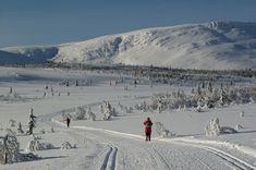 Cross-country Skiing in Venabu Norway, Winter Holidays In Norway   Exodus